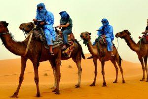 camel-riders-603611_1920