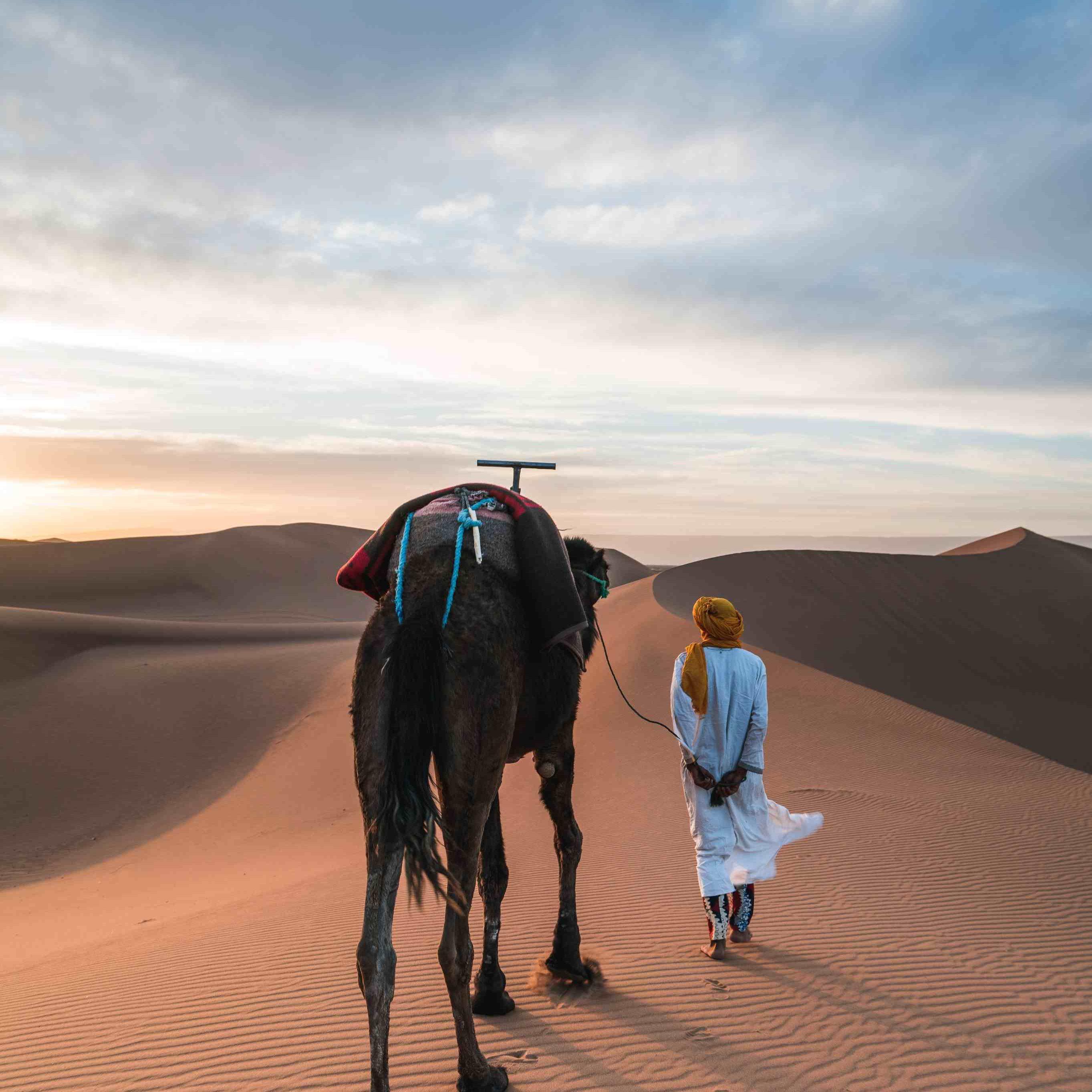 morocco tours (7)